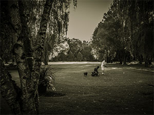 Black and white picture of putting green