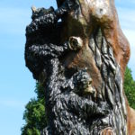 Picture of bear carved on a tree trunk